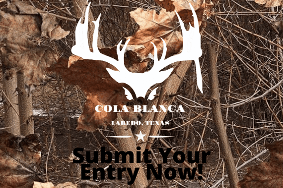 SUBMIT YOUR ENTRY NOW